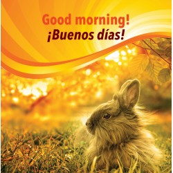 Good morning! / ¡Buenos días!