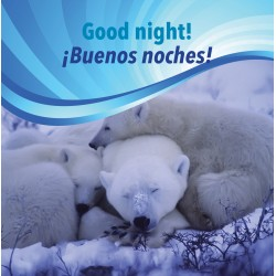Good night! / ¡Buenas noches!