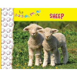 1-2-3  do, re, me  SHEEP