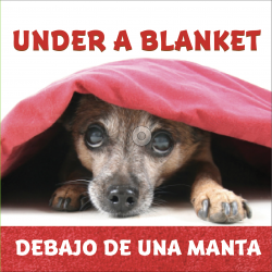 Under a Blanket / Debajo de una manta