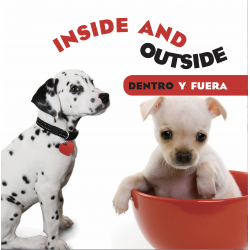 Inside and Outside/ Dentro y fuera