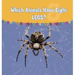 Which Animals Have Eight Legs?