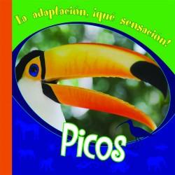 Picos